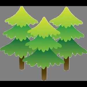 Pagosa Pines RV Park Logo